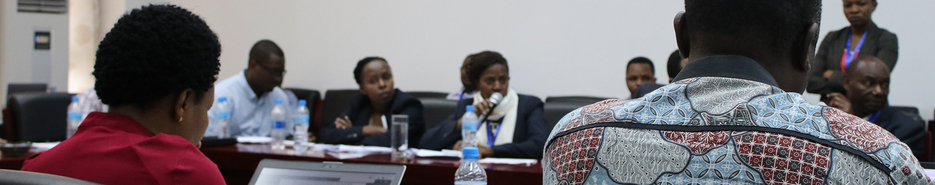 Tanzania project Research review workshop 2020 banner