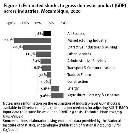 Figure 1: Estimated shocks to gross domestic product (GDP) across industries, Mozambique, 2020