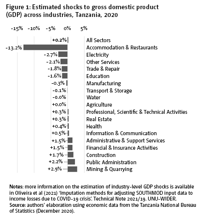 Figure 1: Estimated shocks to gross domestic product (GDP) across industries, Tanzania, 2020