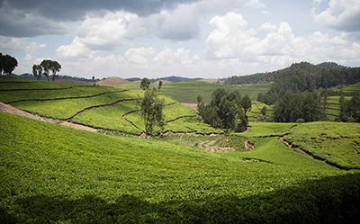 RB20-3-Rwanda-AMelodyLee-WorldBank
