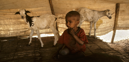 Young child is sharing a tent with two goats in Touareg near Nara. Photo: © UN Photo/John Isaac.