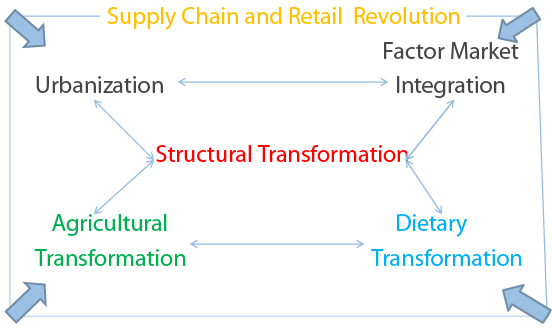 Figure 1: Drivers of structural transformation: five key components of the agri-foods system
