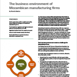 Policy Brief 2/2018 – The business environment of Mozambican manufacturing firms