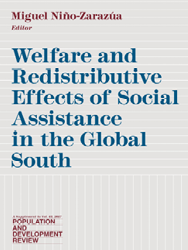 Welfare and distributive effects of social assistance in the Global South cover image