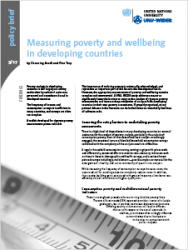 Policy Brief 9/2017 – Measuring poverty and wellbeing in developing countries