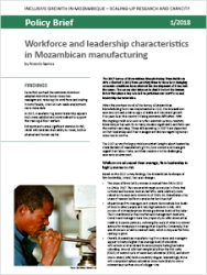 Policy Brief 1/2018 – Workforce and leadership characteristics in Mozambican manufacturing