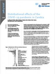 WIDER Policy Brief 2/2021 - Distributional effects of the COVID-19 pandemic in Zambia