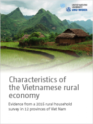 Characteristics of the Vietnamese rural economy: Evidence from a 2016 rural household survey in 12 provinces of Viet Nam
