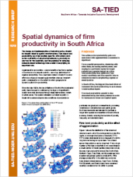 SA-TIED Research Brief: Spatial dynamics of firm productivity in South Africa