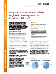 SA-TIED Research Brief: Can trade in services bolster regional development in Southern Africa?